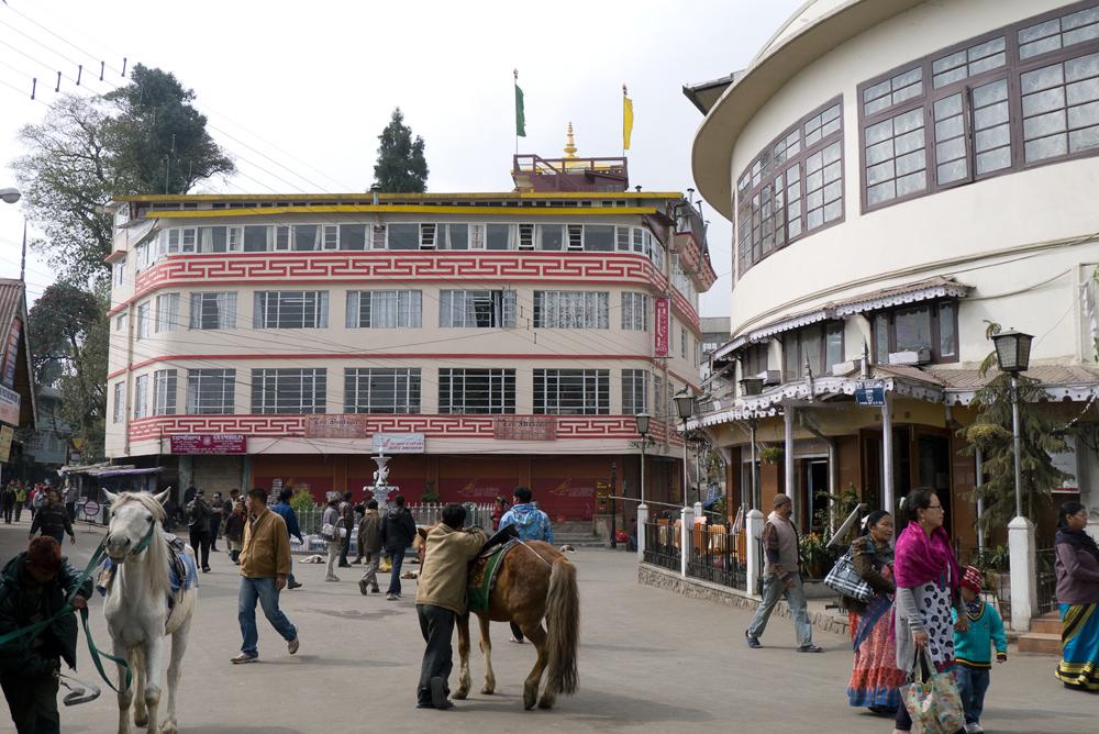 India_Darjeeling__14