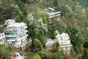 Sikkim_2_BLOG_18