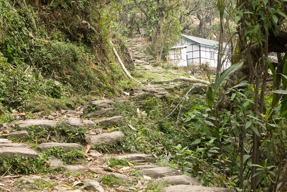 Yuksom, West Sikkim